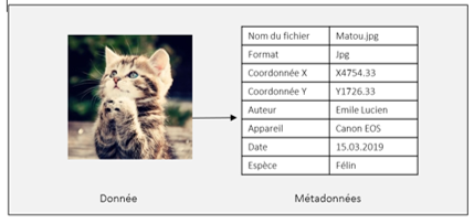 metadata_cat_tableau.png